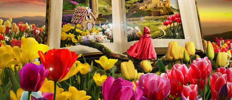 Tulipmania Floral Display
